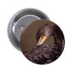 cormorant pin