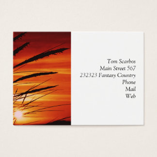 Corn Business Card
