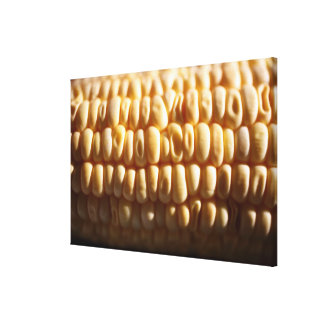 Corn close-up canvas print