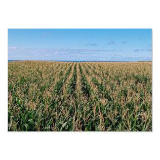 Corn field 13 cm x 18 cm invitation card