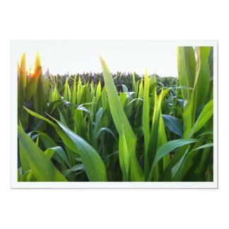 Corn Field Harvest Photo Invitation Template