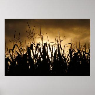 Corn field Silhouettes Poster