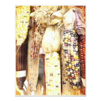 "Corn of Many Colors Invitation 4.25"" X 5.5"" Invitation Card"