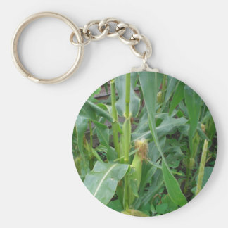 Corn on the Cob Key Ring