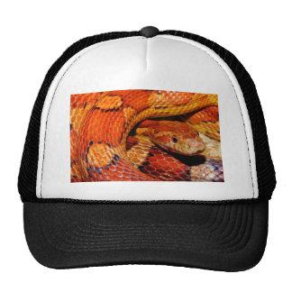 Corn Snake Trucker Hats
