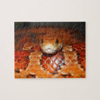 Corn Snake Jigsaw Puzzle