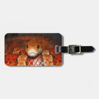 Corn Snake Luggage Tag