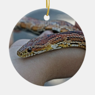 CORN SNAKE ORNAMENT
