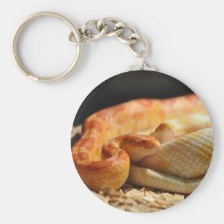 Corn Snakes Key Ring