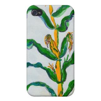 Corn Stalk iPhone 4 Cases