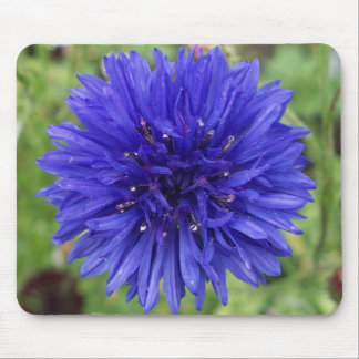 Cornflower Blue Boy Mouse Pad