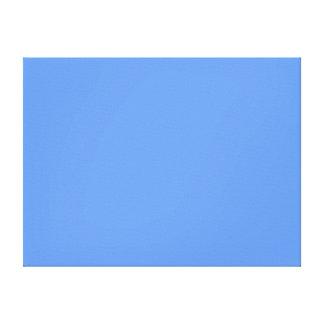 Cornflower Blue Canvas Print