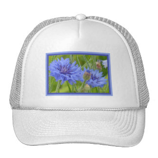 Cornflower Blues Hat