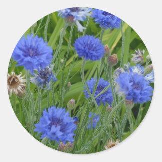 Cornflower Blues Round Sticker