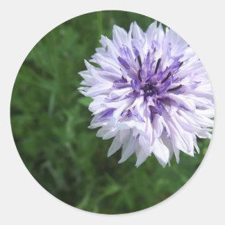 Cornflower Classic Round Sticker