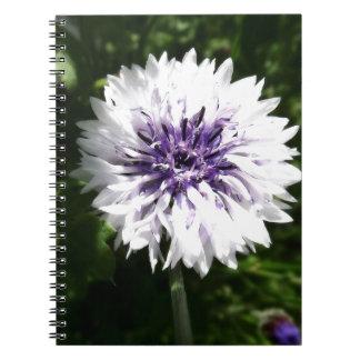 cornflower notebook