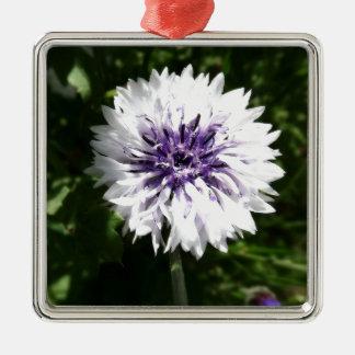 cornflower Silver-Colored square decoration
