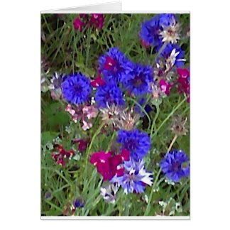 Cornflowers in the Wild Greeting Card