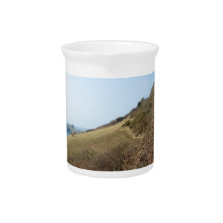 Cornish coast drink pitcher