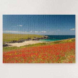 Cornish Coastal Poppy Fields