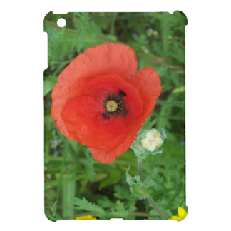 Cornish Wildflowers Poppy iPad Mini Cover