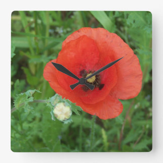Cornish Wildflowers Poppy Square Wall Clock