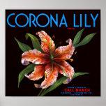 Corona Lily Print