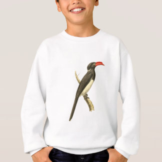 Coronated Hornbill Bird Illustration Sweatshirt