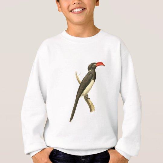 Coronated Hornbill Bird Illustration Sweatshirt