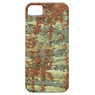 Corroded Rusty Steel Plate iPhone 5 Cases