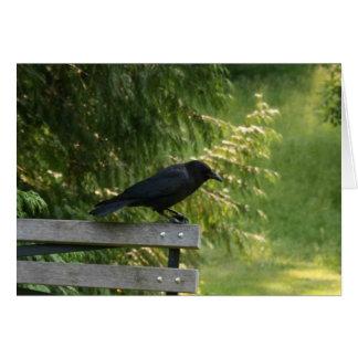 Corvus brachyrhynchos, American Crow Stationery Note Card