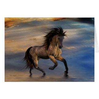 Cosmic .. wild stallion card