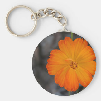 cosmo key chain