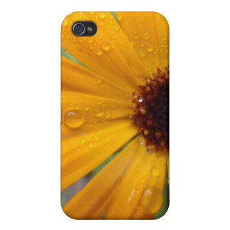 Cosmos Case For iPhone 4