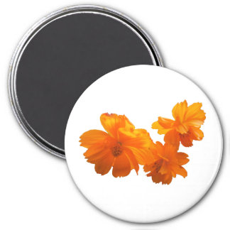 Cosmos Charm Magnet