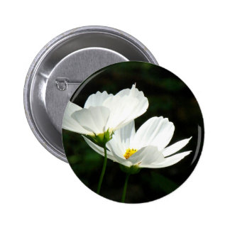Cosmos Daisy Flowers 6 Cm Round Badge