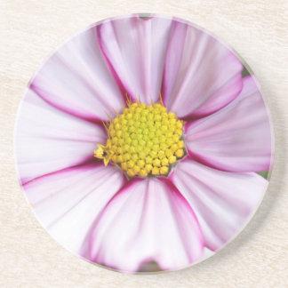 Cosmos Flower (bidens formosa) Drink Coaster