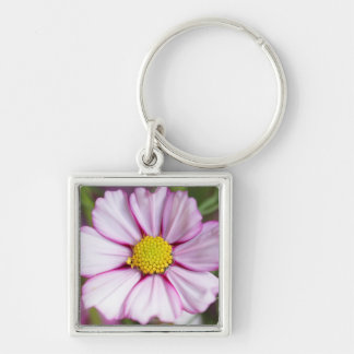 Cosmos Flower (bidens formosa) Key Ring
