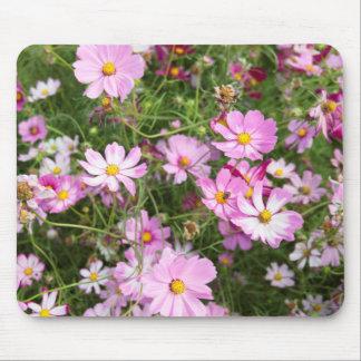 Cosmos Flower (Bidens Formosa). Kirkwood Mouse Mat