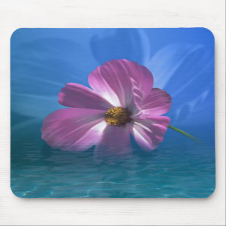 Cosmos Flower Mouse Pads