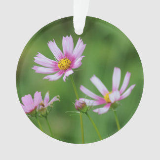 Cosmos Flowers Ornament