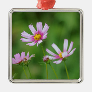 Cosmos Flowers Silver-Colored Square Decoration