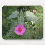 Cosmos in the Garden Mouse Pads