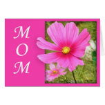 Cosmos Mother's Day Card (Large Print)