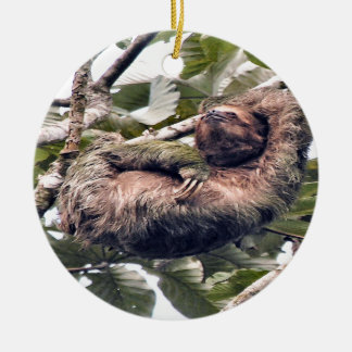 Cosra Rican sloth Christmas Ornament