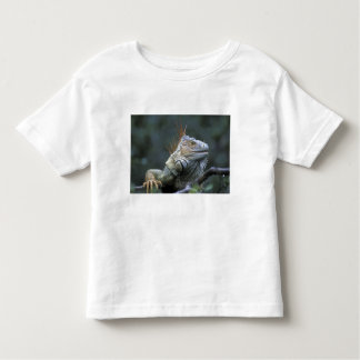 Costa Rica, Alajuela Province, Muelle San Toddler T-Shirt