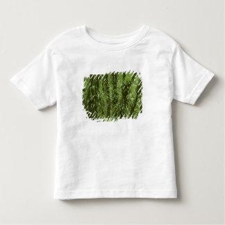 Costa Rica, Arenal National Park, rainforest Toddler T-Shirt