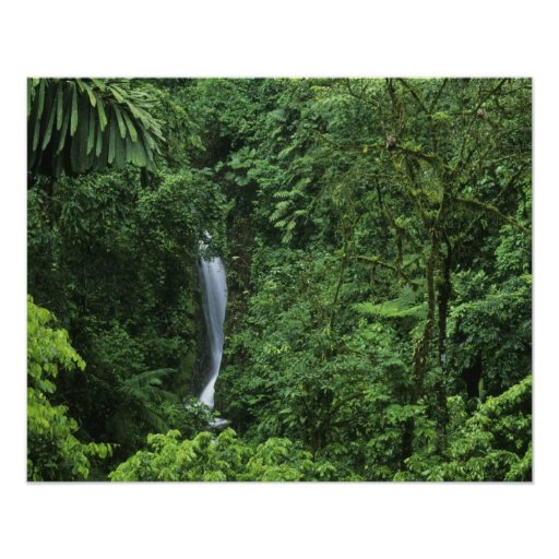 Costa Rica, Arenal Volcano area, Hanging Bridges Print