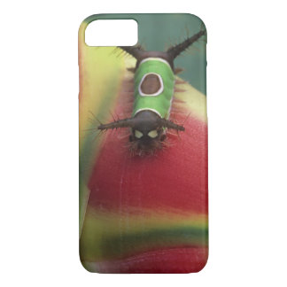 Costa Rica, Close-up of Caterpillar on Heliconia iPhone 8/7 Case