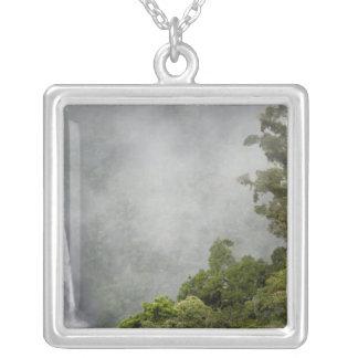 Costa Rica, cloud forest in mountains near La Pendants